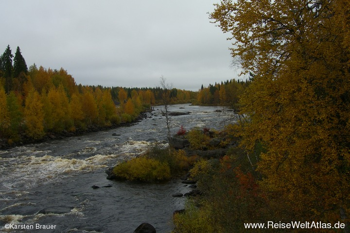 Buntes Flussufer