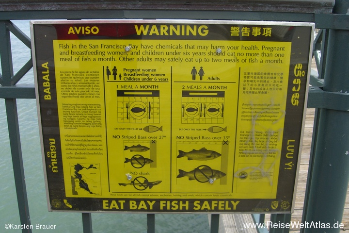 Eat Bay Fish
