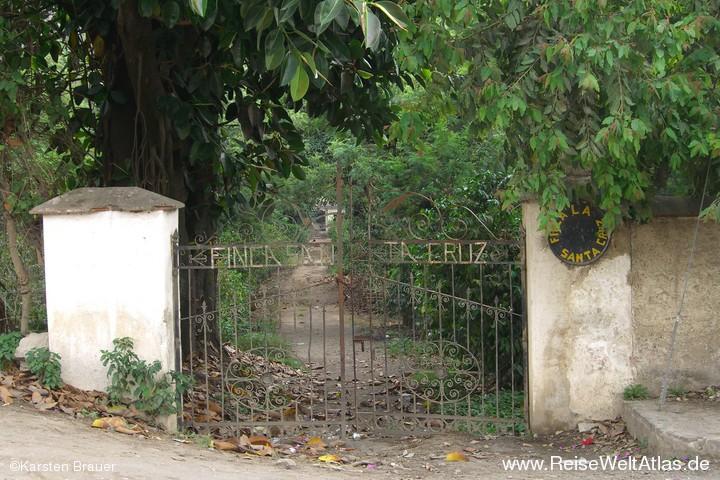 Finca Santa Cruz