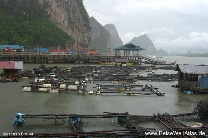 Fischfarmen