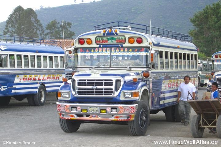 Fordbus