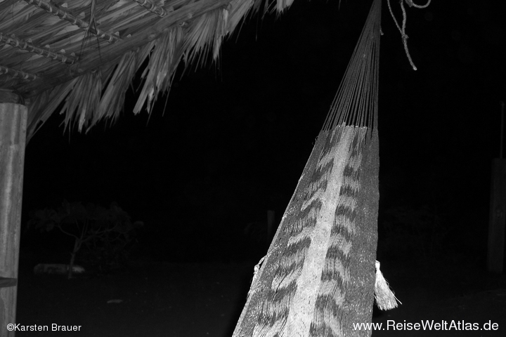 Hammock Nights