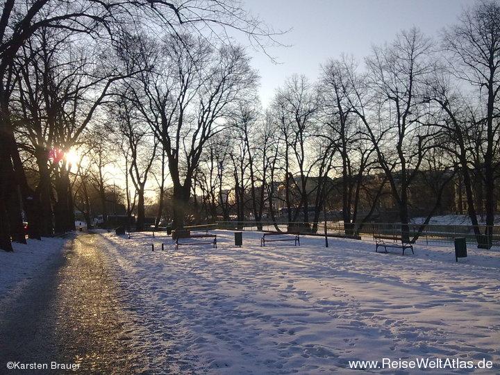 Sonne im Park